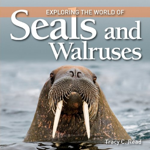 Image for Exploring the World of Seals and Walruses